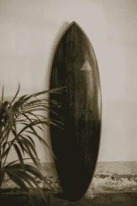 Truwood BLACK MAMBA