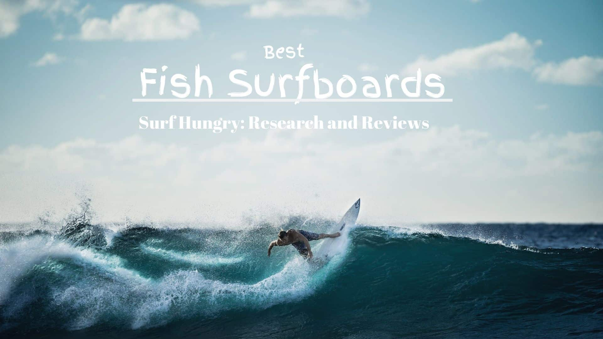 best fish surfboard