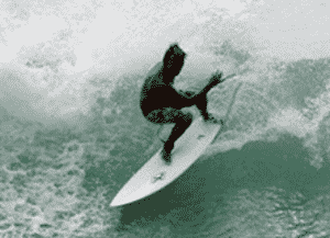 xandu surfboard