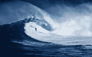 surfing vs bodyboarding
