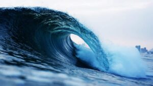 surfing waves with shortboards
