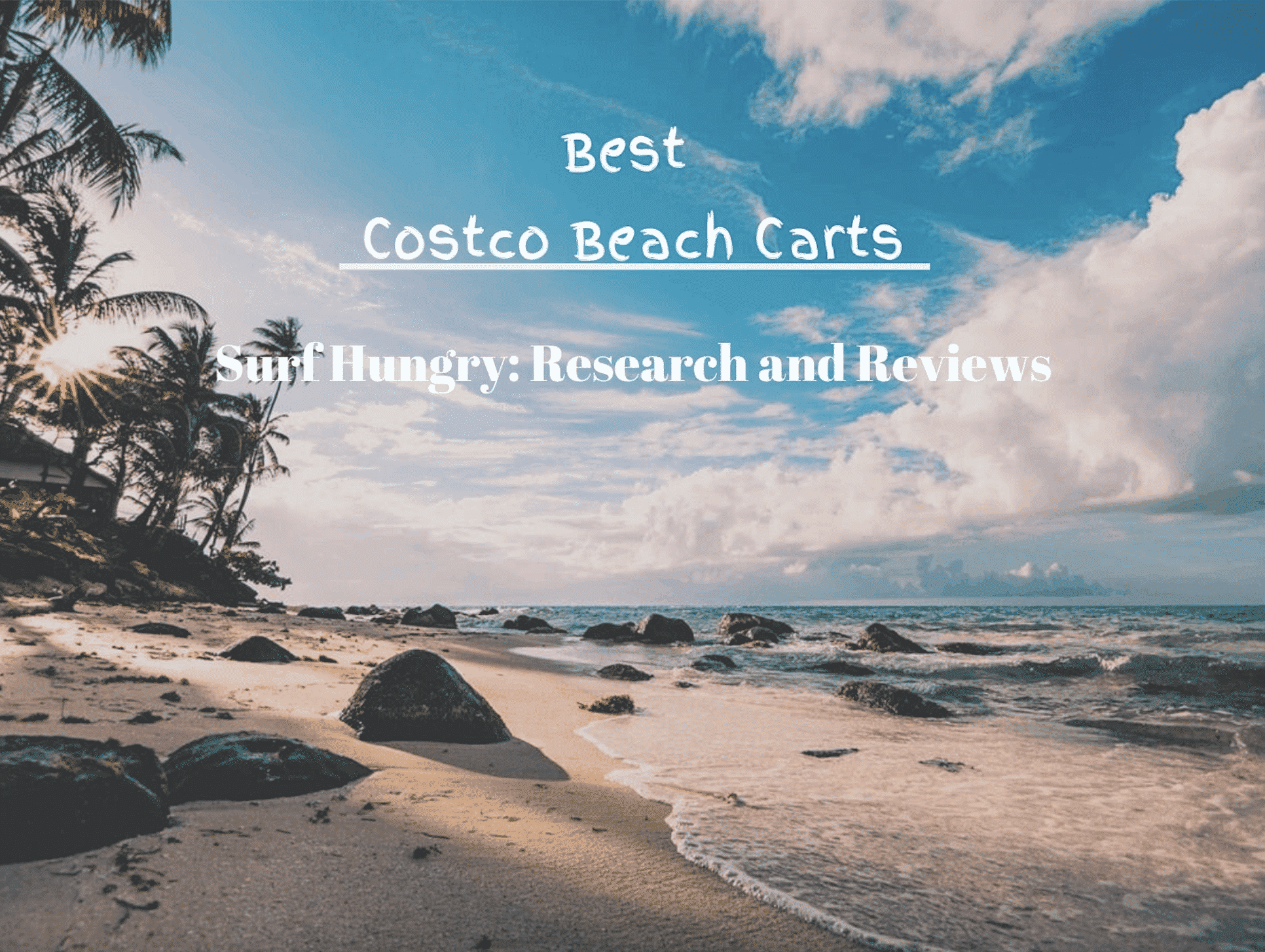 costco beach carts