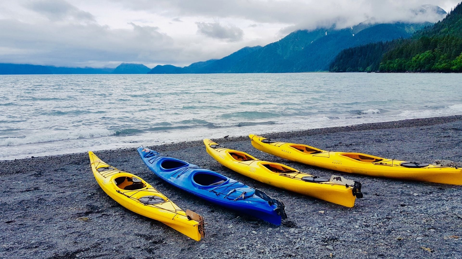 Wilderness Systems Kayaks Review