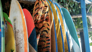 protecting your surfboard