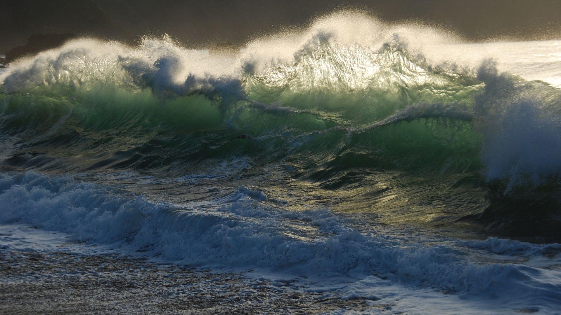 best surf forecasting websites