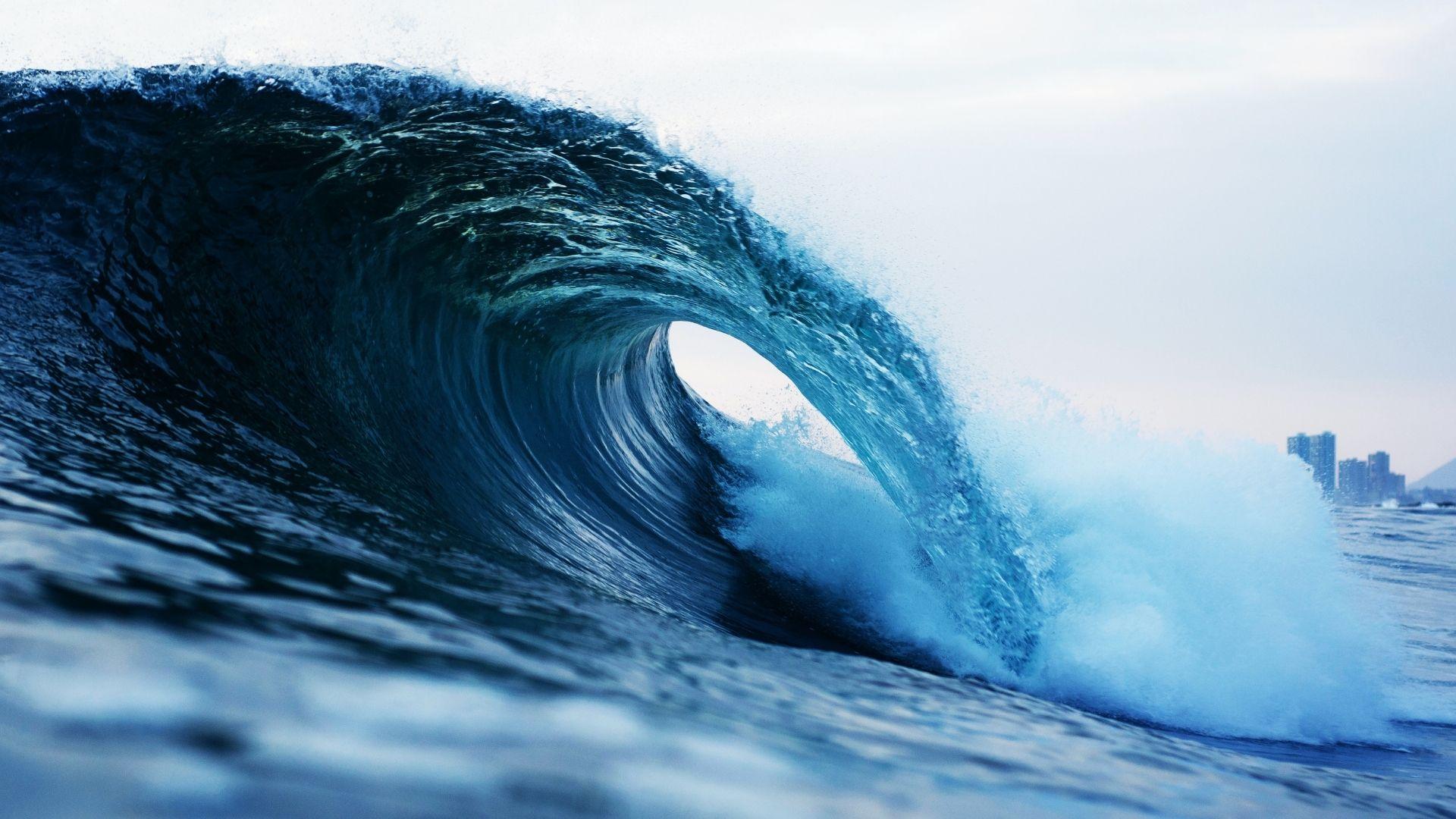 best surfing documentaries